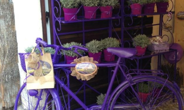 Venzone = Italy&Lavendel in Love